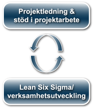 Project Lean Six Sigma